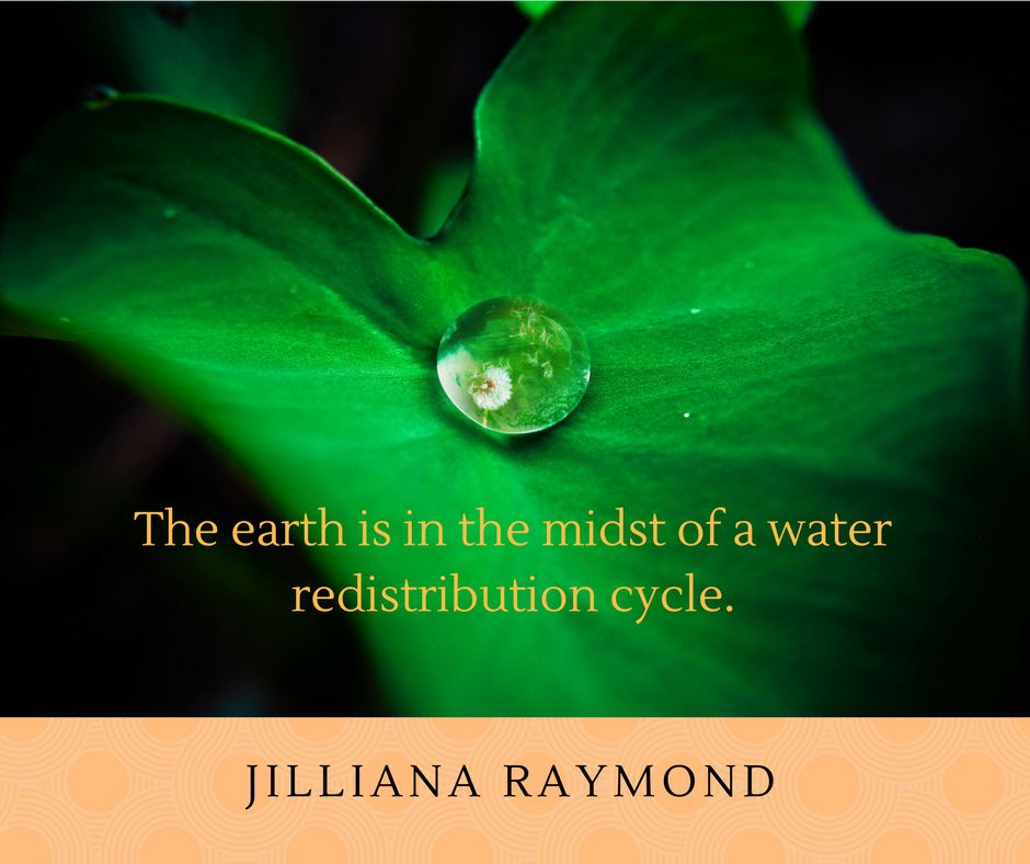 Becoming Earth Custodians